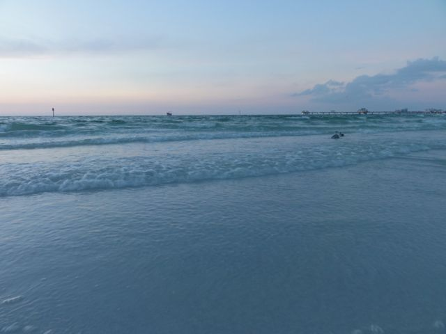 Clearwater Florida Sunset
