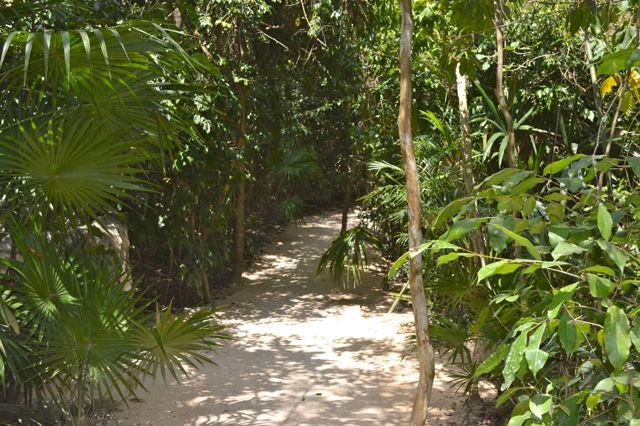 Xcaret Playa del Carmen Mexico