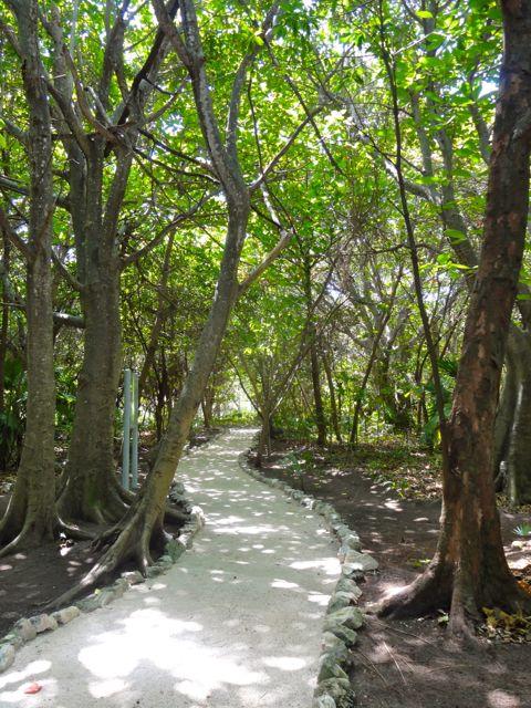Museo Maya de Cancun Ruins gardens