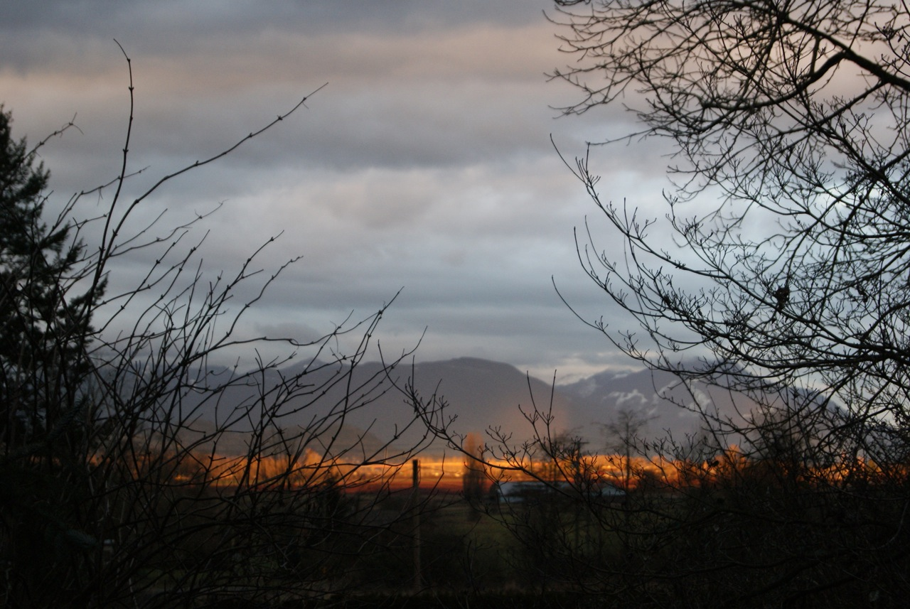 The fields and mountains in Abbotsford, British Columbia turned a bright orange when the sun was setting