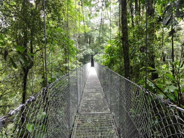 Costa Rica - Hanging Bridge
