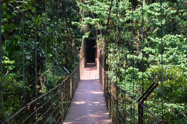 Costa Rica Photo Essay - Hanging Bridge over a jungle valley