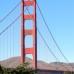 House Sitting San Francisco     Golden Bridges & Golden Oldies!