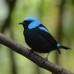 Best of Costa Rica Photo Essay