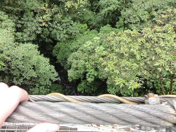 Road Trip through Costa Rica - Hanging Bridge