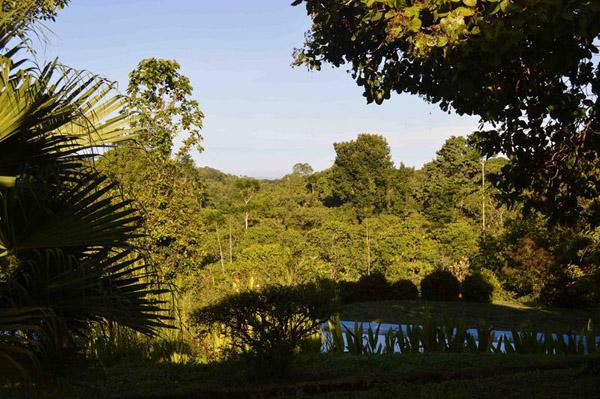 Road Trip through Costa Rica - View 2