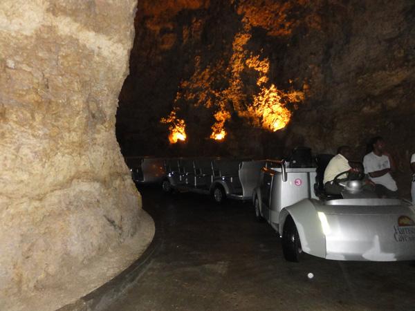 Harrisons Cave - Tram