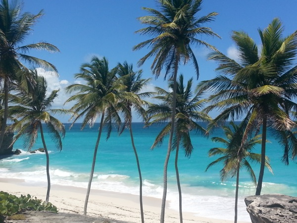 http://suitcasestories.com/wp-content/uploads/2013/07/BARBADOS-palm-trees-on-beach.jpg