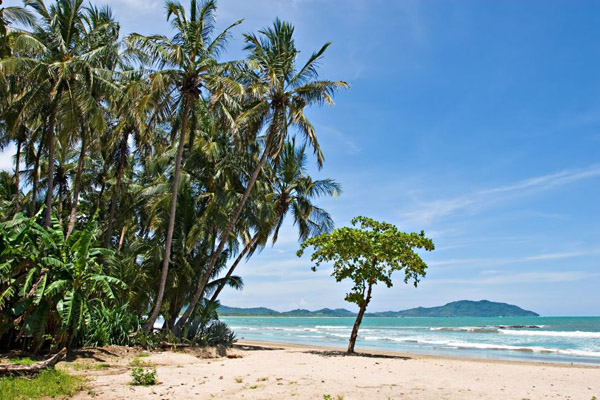 Top Places To See In Northern Costa Rica - Tamarindo Beach