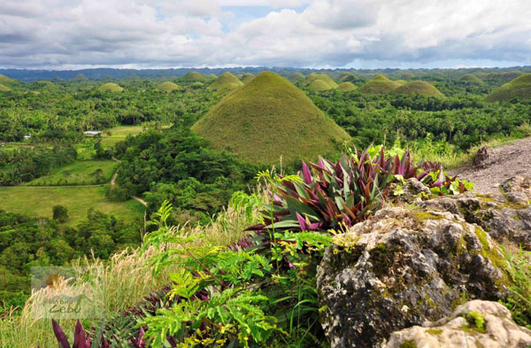 Top 5 Tropical Islands of Cebu Philippines - Chocolate Hills in Bohol