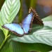 Wildlife Photo Essay Part 2