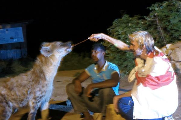 Jonny Blair feeding a hyena in Harar Ethiopia