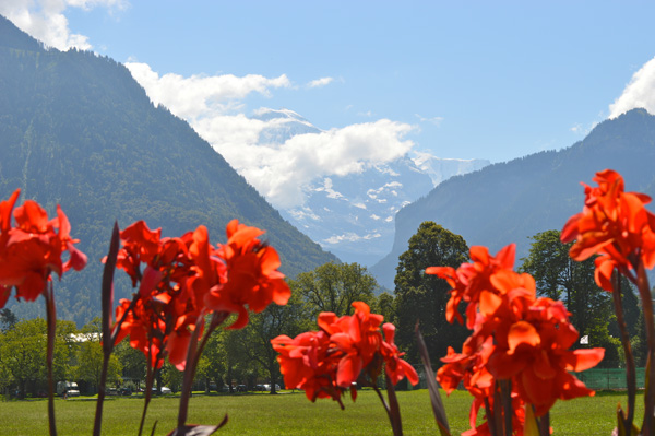 Interlaken Photo Essay - 1