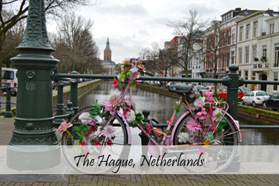 The Hague Cover Photo