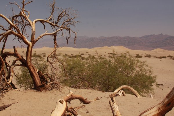 Travel Bloggers Tell All - Our Favorite Places - Daves Travel Corner - Death Valley
