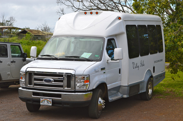 Experience the Journey to Hana with Valley Isle Excursions - Bus