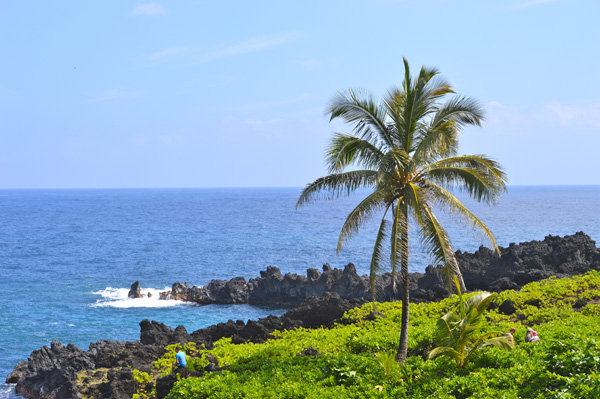 Experience the Journey to Hana with Valley Isle Excursions - Views