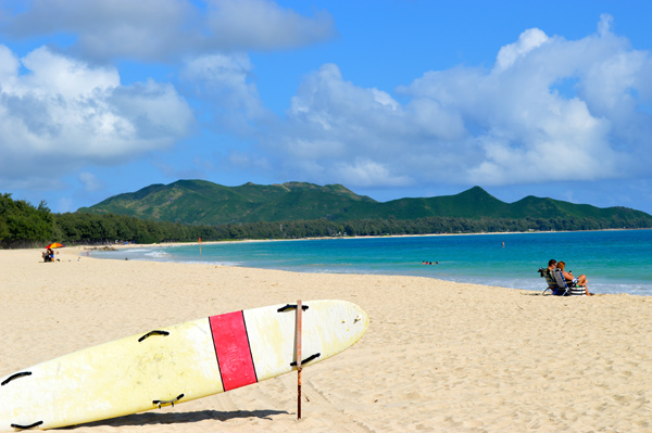 See Oahu in a Day with the Ultimate Circle Island Eco Adventure - Beach