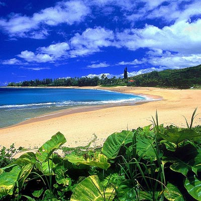 The Most Stunning Beaches in Kauai