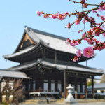 Boutique Luxury at Brighton Hotel Kyoto