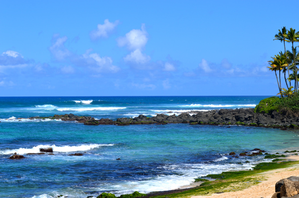 Postcards from Hawaii - Our Best from Oahu, Maui and Kauai - Oahu - Beach
