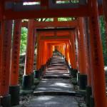 Haru, Shrines and Hoshinoya – The Best of Kyoto