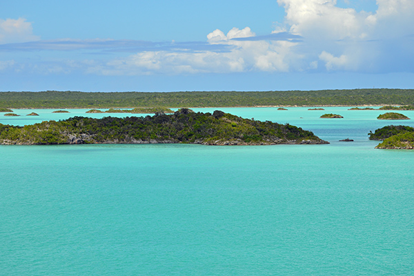 Turks and Caicos in Photos - Lake 2