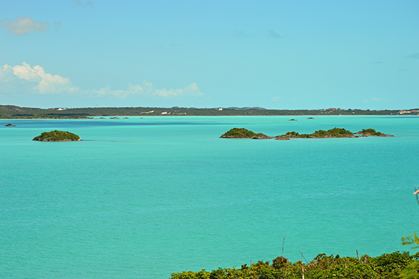 Turks and Caicos in Photos - Lake