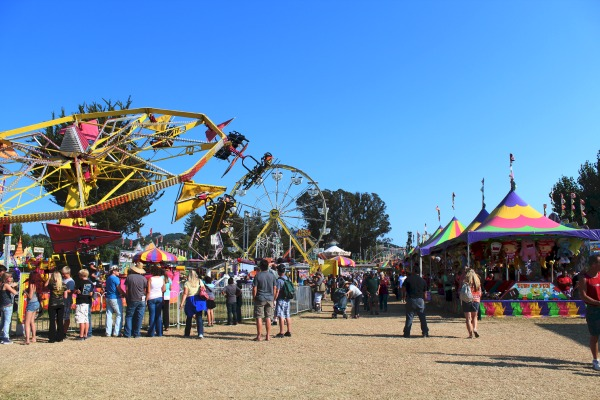 Three Days in California Wine Country -  Sonoma county fair