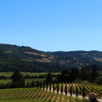 Three Days in California Wine Country by @tonifrazer
