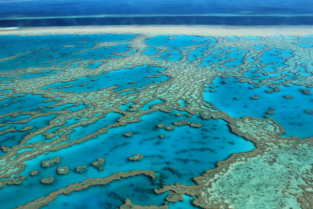 Unmissable Cairns Itinerary - Great Barrier Reef