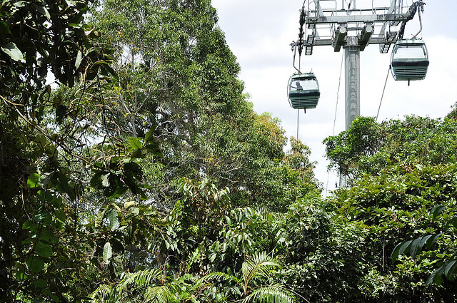 Unmissable Cairns Itinerary - Sky Rail Ride