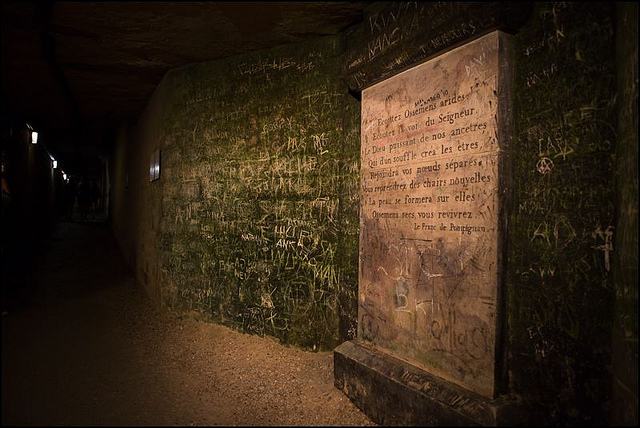 Sights to See From Pedigree to Pedestrian in Paris - Les Catacombes
