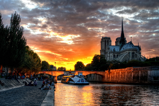 Sights to See From Pedigree to Pedestrian in Paris - Notre Dame