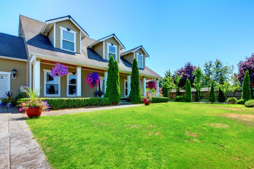 Six Experts Answer Your House Sitting Questions (Part 2) - Suitcase