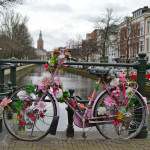 Places to See in a Day from Rotterdam
